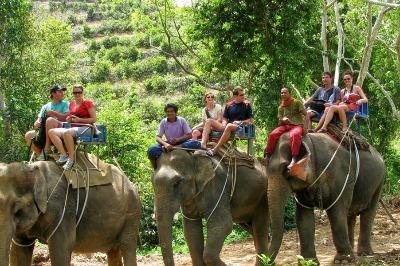 Elephant Safari tour 2