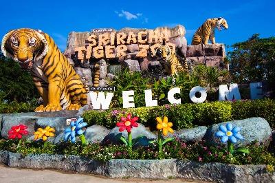 Siracha Tiger Zoo Pattaya