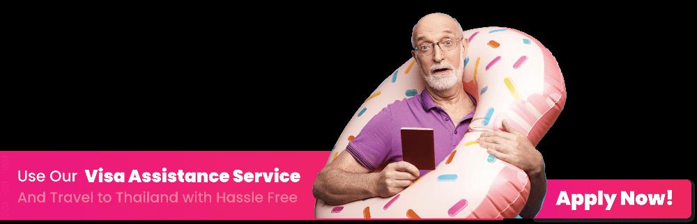 Visa Service website