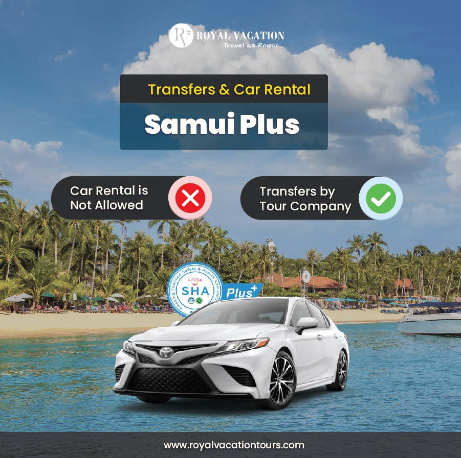 transfers and car rental