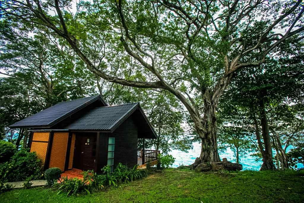 Phi Phi Natural Resort 20